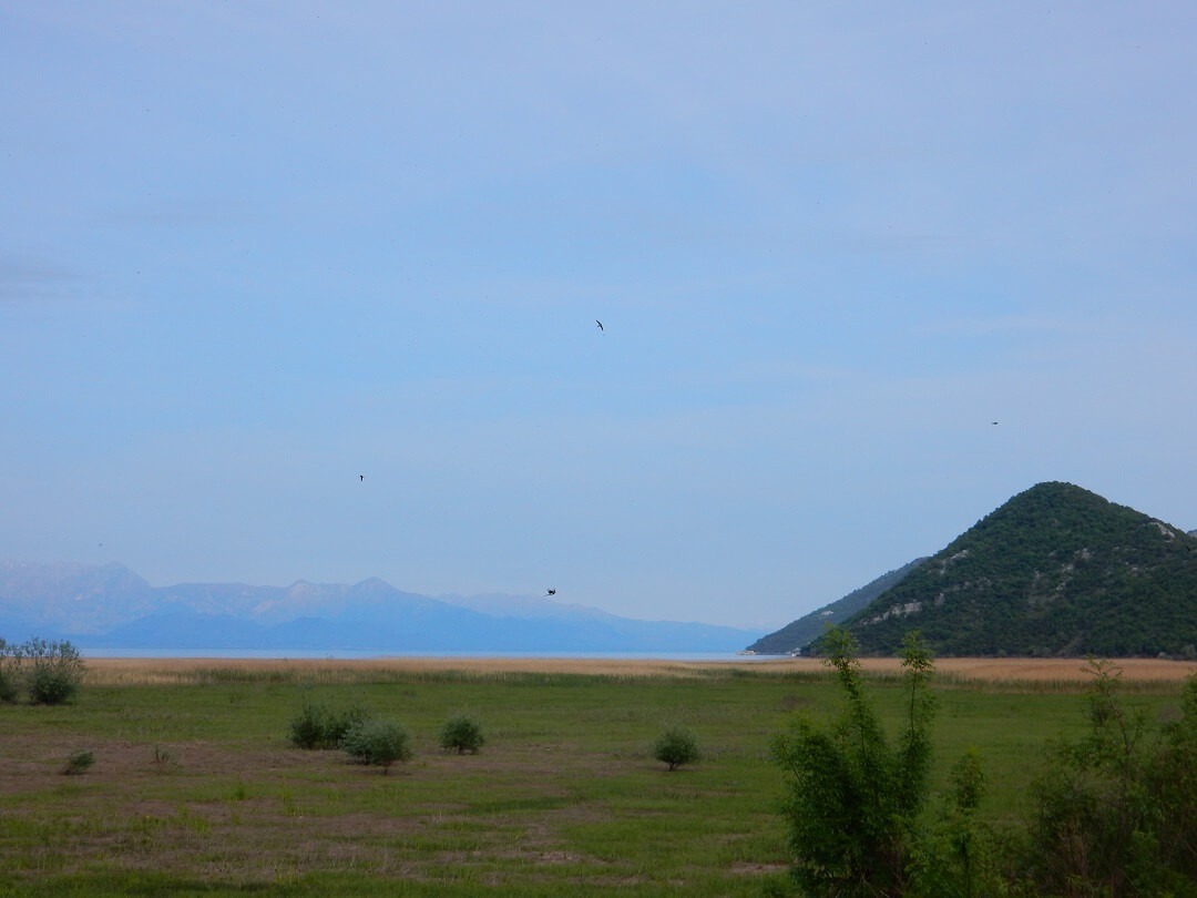 3 - Virpazar by train - Lake skadar with Albania in the distance