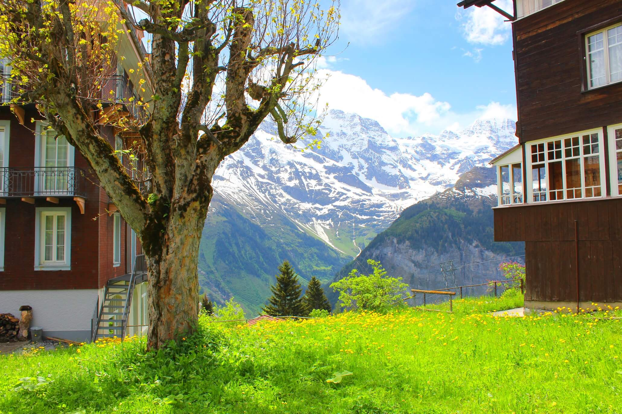 Lauterbrunnen by train - And I wish this was my house!