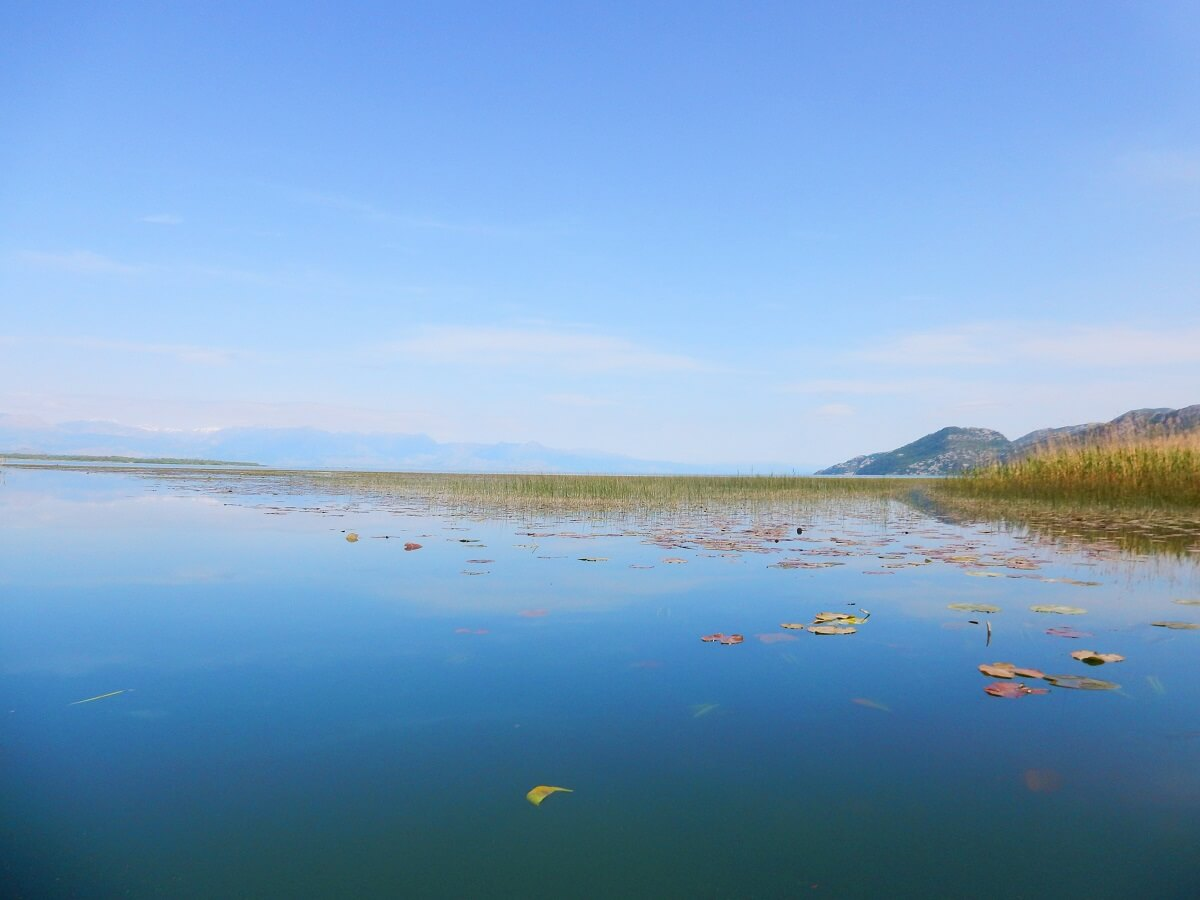 Top 5 things to see in Montenegro - Beautiful Lake Skadar