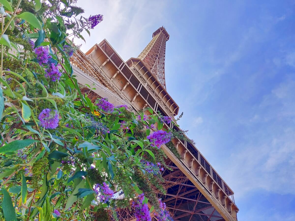 Top 10 unusual things to do in Paris - The Eiffel Tower