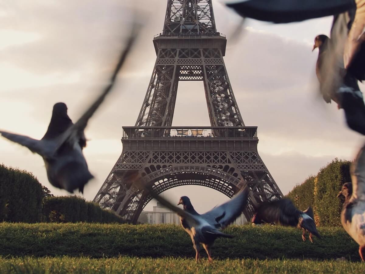 Top 10 unusual things to do in Paris - Photo by Stijn te Strake on Unsplash
